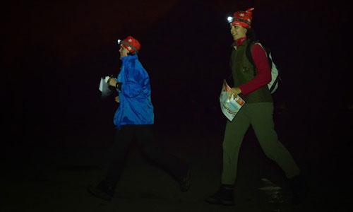 Gazelles-orientation-nuit2